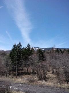 早春のバラギ高原