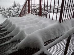 雪、どっさり(°□°;)