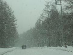 嬬恋(バラギ高原)は雪!
