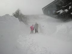雪、多すぎ!