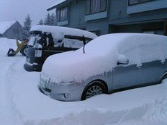 朝から雪かき!