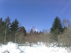 天気は良好!