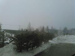 えーと、霧です。