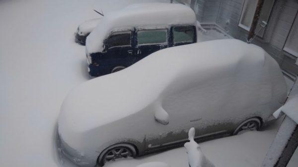 バラギ高原、吹雪 !!
